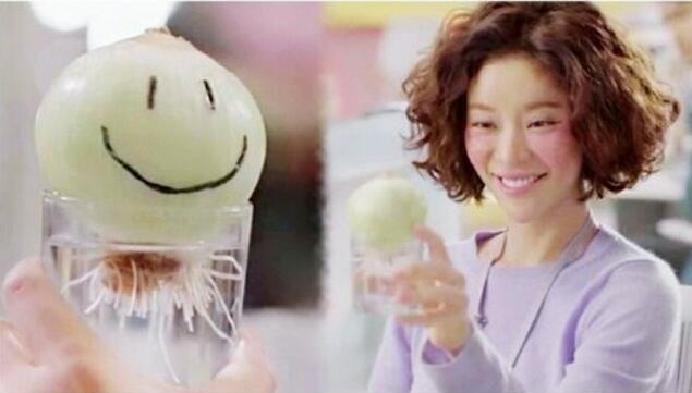amigurumi_onion_from_korean_drama_she_was_pretty_1446773149_d02930d0